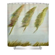 Flying Trees Shower Curtain
