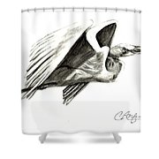 Flying Your Way Shower Curtain