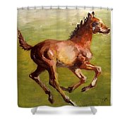 Foalin' Around Shower Curtain