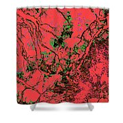 Focus Of Attention 10 Shower Curtain
