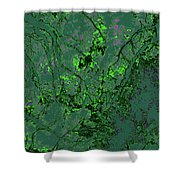Focus Of Attention 11 Shower Curtain