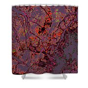 Focus Of Attention 14 Shower Curtain