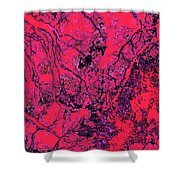 Focus Of Attention 19 Shower Curtain