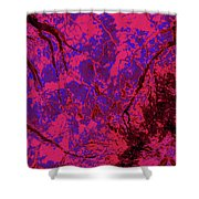 Focus Of Attention 23 Shower Curtain