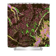 Focus Of Attention 28 Shower Curtain