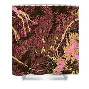 Focus Of Attention 29 Shower Curtain