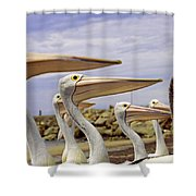 Focused Attention Shower Curtain