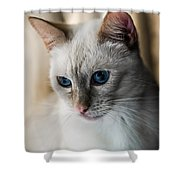 Focused Shower Curtain