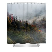 Fog And Color. Shower Curtain