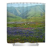 Fog And Wildflowers At Bear Mountain Shower Curtain