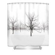 Fog And Winter Black Walnut Trees  Shower Curtain