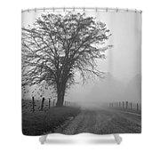 Fog Covered Lane Shower Curtain