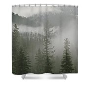 Fog Hangs In A Valley Of Evergreens Shower Curtain