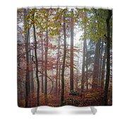 Fog In Autumn Forest Shower Curtain