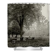 Fog In Cemetery 2383gt_s2 Shower Curtain