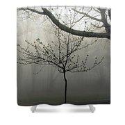 Fog In Shenandoah Shower Curtain