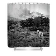 Fog In The Organ Mountains Shower Curtain