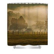 Fog In The Park Shower Curtain