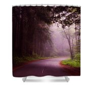 Fog In The Redwoods Shower Curtain