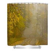 Foggy Autumn Morn Shower Curtain