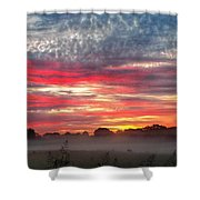 Foggy Carpet Over South Carolina Cattle Farm Shower Curtain by Alex Grichenko