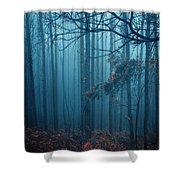 Foggy Forest Shower Curtain