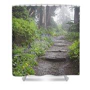 Foggy Forest Path Shower Curtain