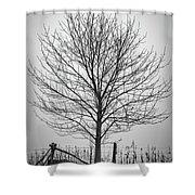 Foggy Lone Tree Hill Fine Art Shower Curtain