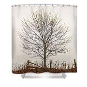 Foggy Lone Tree Hill Shower Curtain