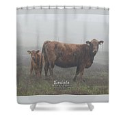 Foggy Mist Cows #0090 Digitally Altered Shower Curtain