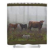 Foggy Mist Cows #0092 Shower Curtain