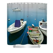 Foggy Morning In Cape Cod Massachusetts  Shower Curtain