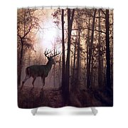 Foggy Morning In Missouri Shower Curtain