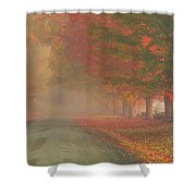 Foggy Morning On Cloudland Road Shower Curtain