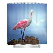 Foggy Morning Spoonbill Shower Curtain