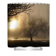 Foggy November Sunrise On The Bay Shower Curtain