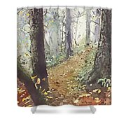 Foggy Path Shower Curtain