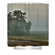 Foggy Tree In The Field Shower Curtain