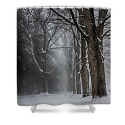 Foggy Vermont Winter Path Shower Curtain