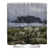 Foggy Winter Morning In The Supes  Shower Curtain