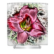 Foiled Beauty - Daylily Shower Curtain