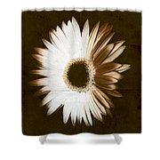 Folded Daisy Shower Curtain