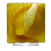 Folds Of A Rose Shower Curtain