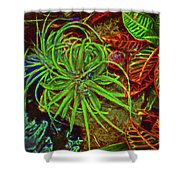 Foliage Abstract 3698 Shower Curtain