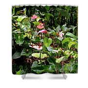 Foliage And Flowers Shower Curtain