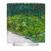 Foliage At Sanibel Shower Curtain