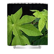 Foliage Shower Curtain