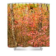 Foliage On Fire Shower Curtain