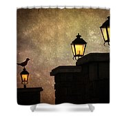 Follow Me Home Shower Curtain
