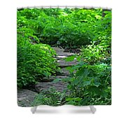 Following Dreams Shower Curtain